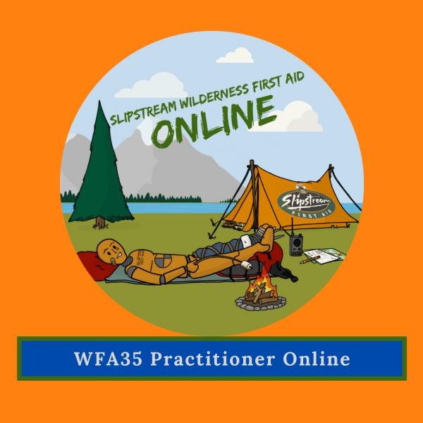 Wilderness First Aid 35 Online