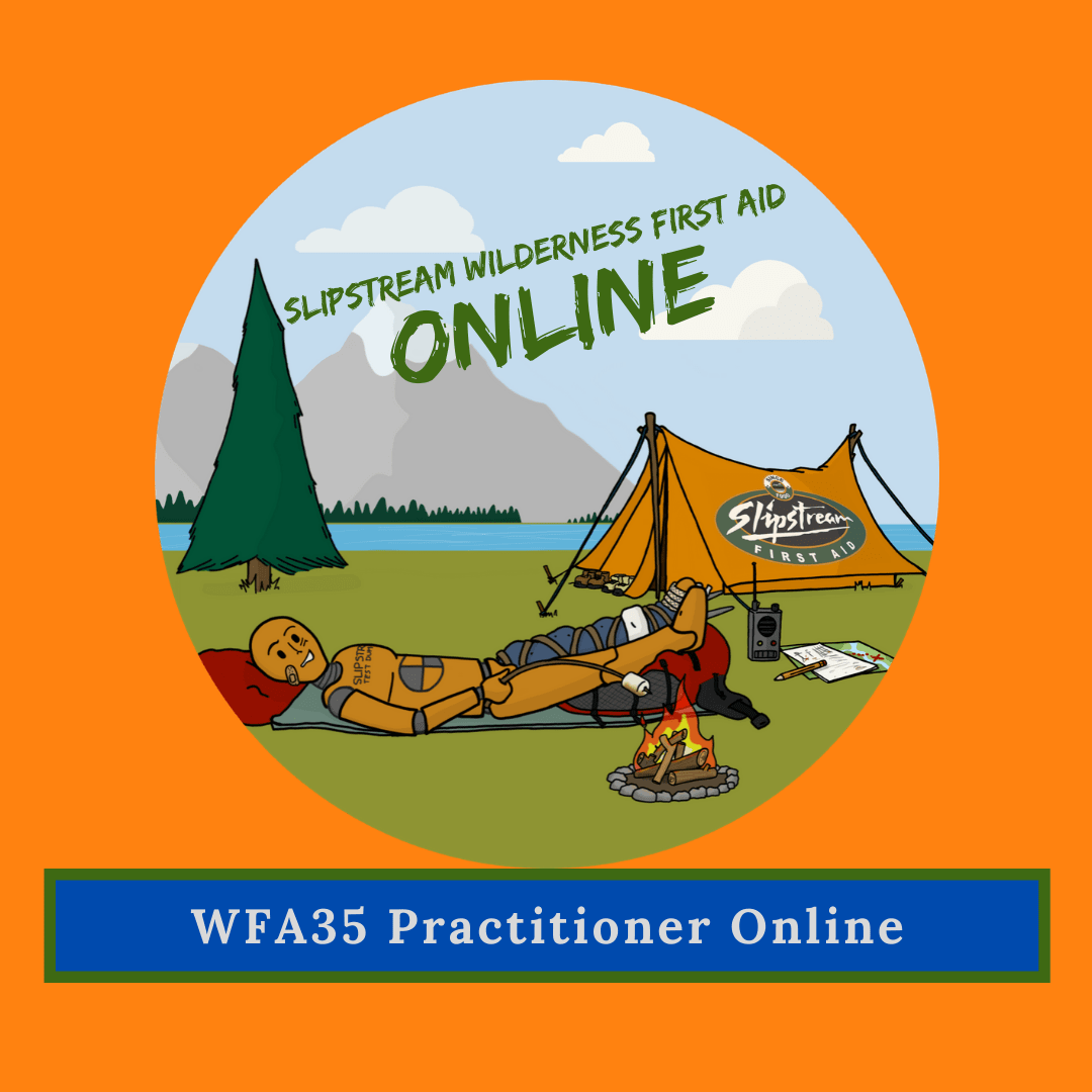 Wilderness First Aid 35 Online