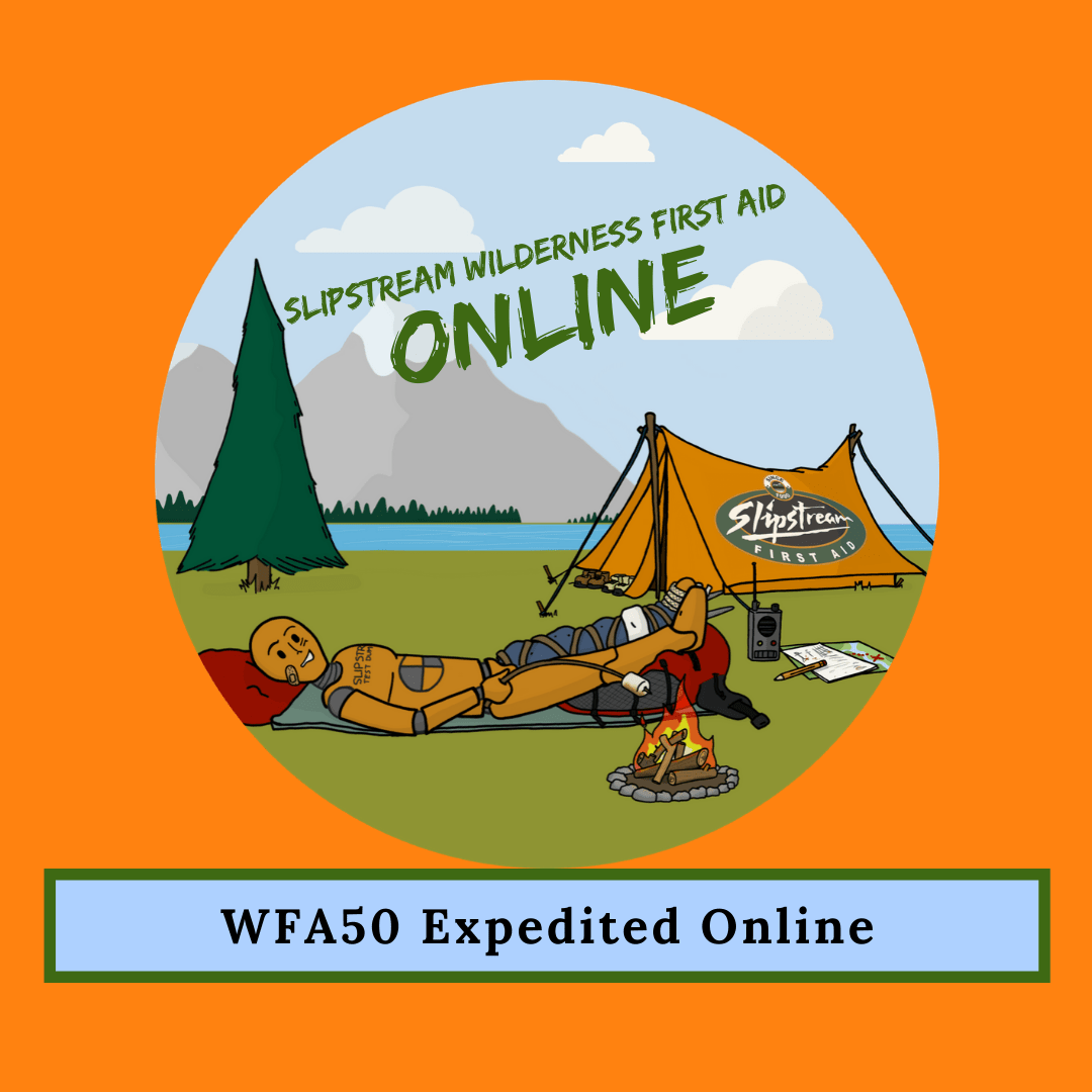 Wilderness First Aid 50 Online
