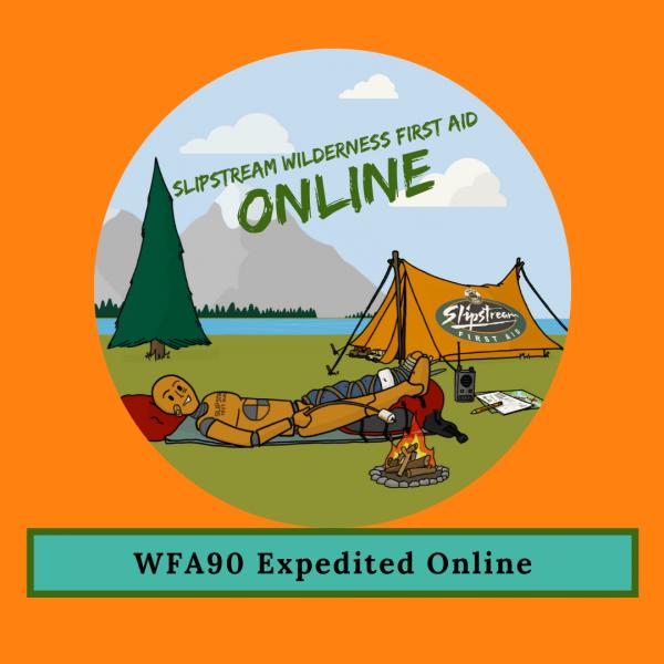 Wilderness First Aid 90 Online