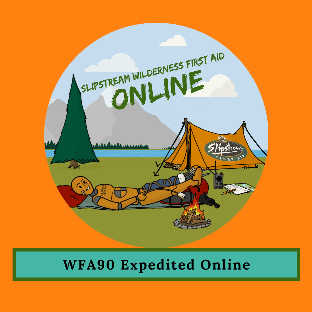 Wilderness First Aid 90 Online